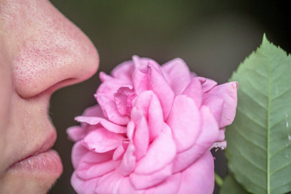 A woman smells a flower.