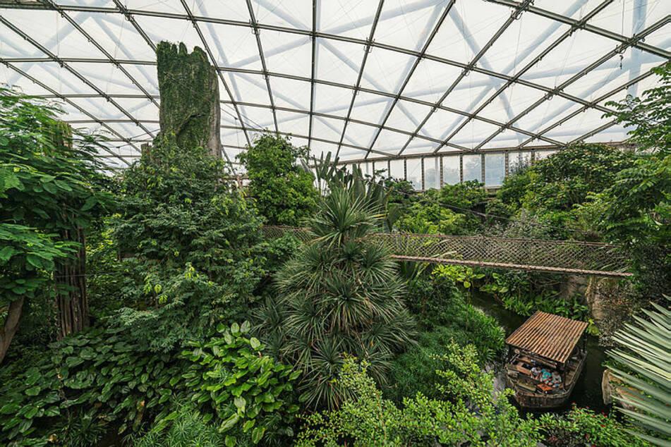 Große Freude im Zoo Leipzig: Diese Besuchermagnete sind ab heute wieder geöffnet