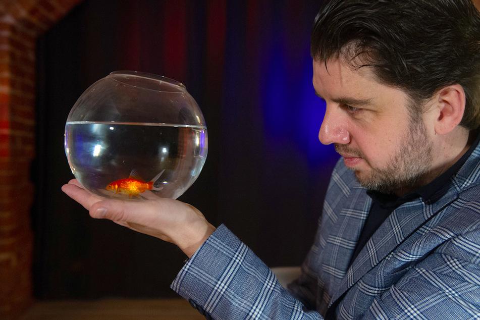 Mental-Zauberer gewinnt US-Show mit verrücktem Goldfisch-Trick: Wie macht er das nur?