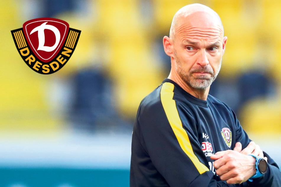 Bei Dynamo ist der Teamspirit da: Trainer Schmidt kann wieder auf Verletzte zurückgreifen