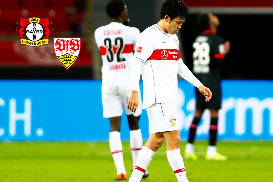 VfB von irrem Pech verfolgt! Hätte es statt Leverkusen-Tor Elfmeter für Stuttgart geben müssen?