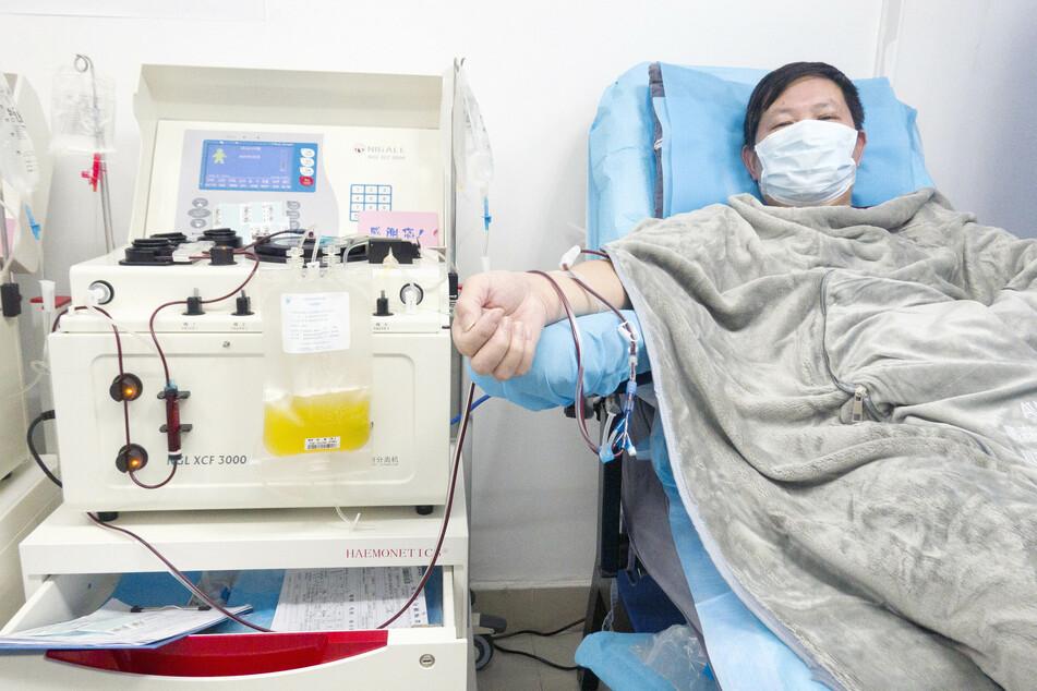 Einem Patienten in Wuhan, der sich nach einer Erkrankung mit dem Coronavirus erholt hat, wird nach der Genesung Blut abgenommen. In seinem Blut befinden sich nach der Erkrankung Antikörper gegen das Virus.