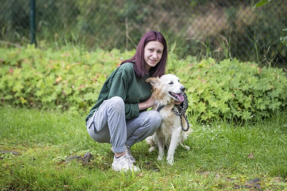 Tierheim-Hund Sammy braucht dringend eine OP, er hat einen bösartigen Tumor und muss operiert werden, Vivien Schuch (18) und ihre Kolleginen kümmern sich um ihn.