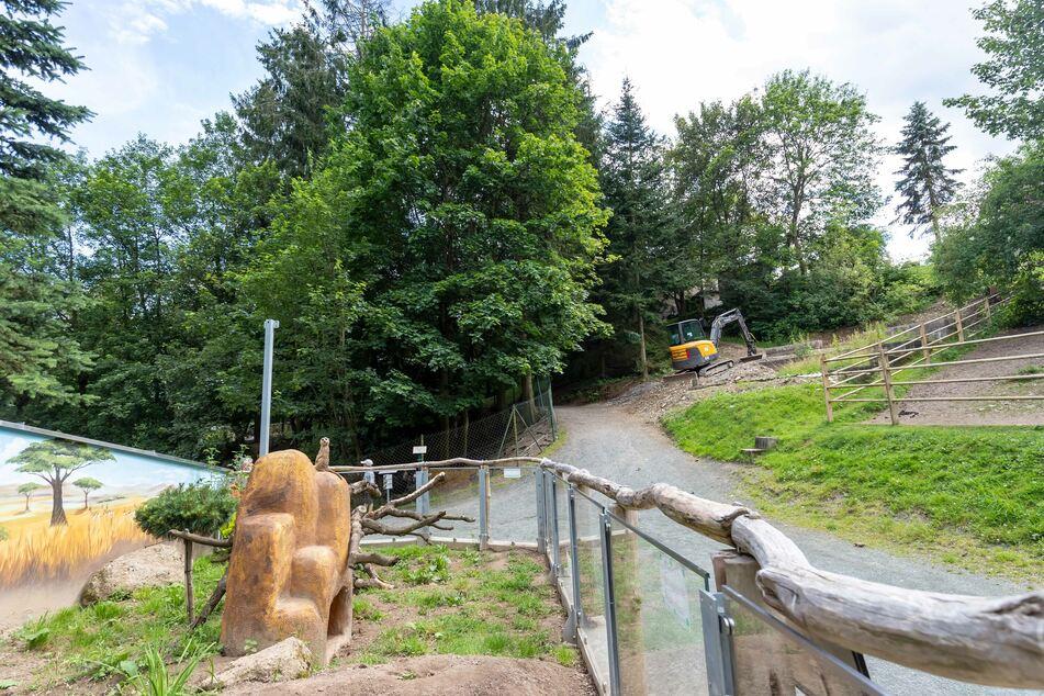 Mit Blick auf das Gehege mit den putzigen Erdmännchen entsteht die Blockhütte aus Lärchenholz - eine nun vom Bürgermeister privat finanzierte Attraktion.