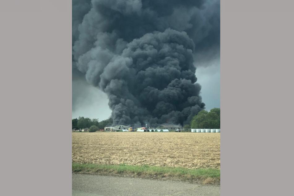 Eine schwarze Rauchsäule steigt über einer Industrieanlage in der Nähe des Parham Airfield in Suffolk in den Himmel. Feuerwehrleute kämpfen noch immer gegen das Feuer in der Anlage.