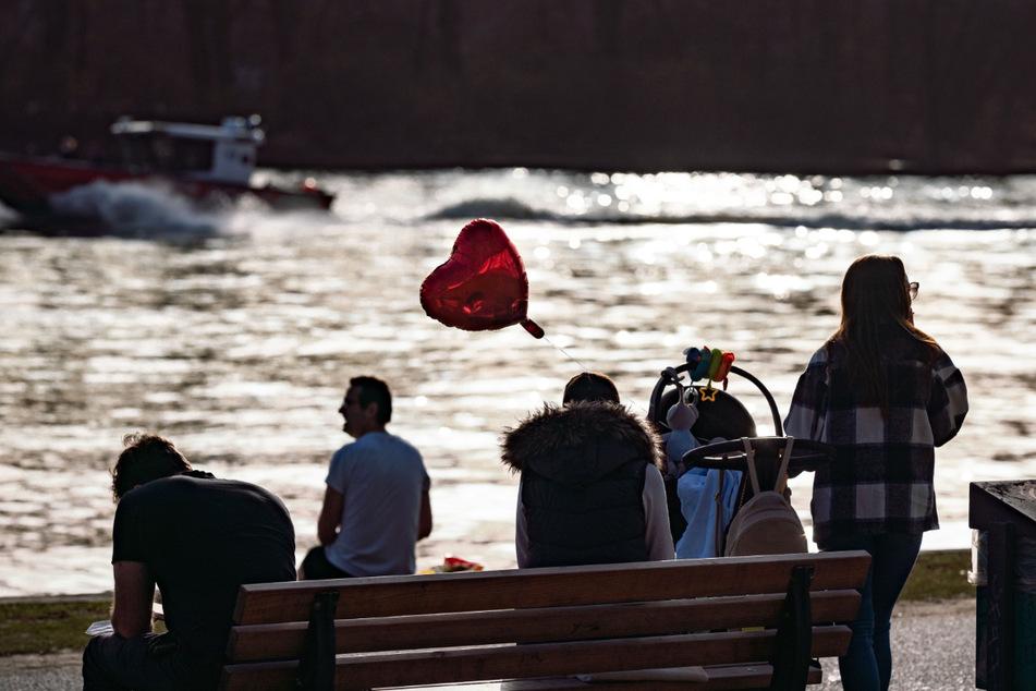 Der Vorfall ereignete sich am Offenbacher Mainufer. (Symbolfoto)