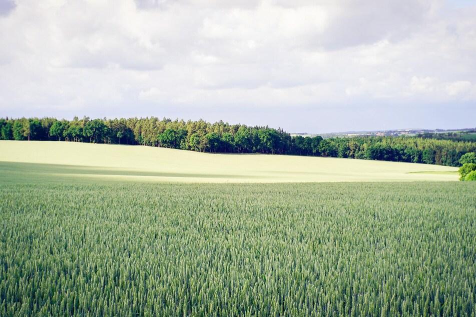 Thüringen Wetter News