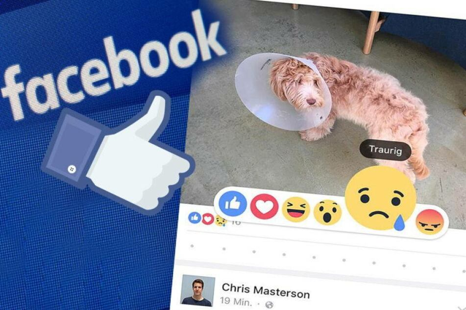 """Facebook führt neue """"Gefällt mir""""-Buttons ein"""