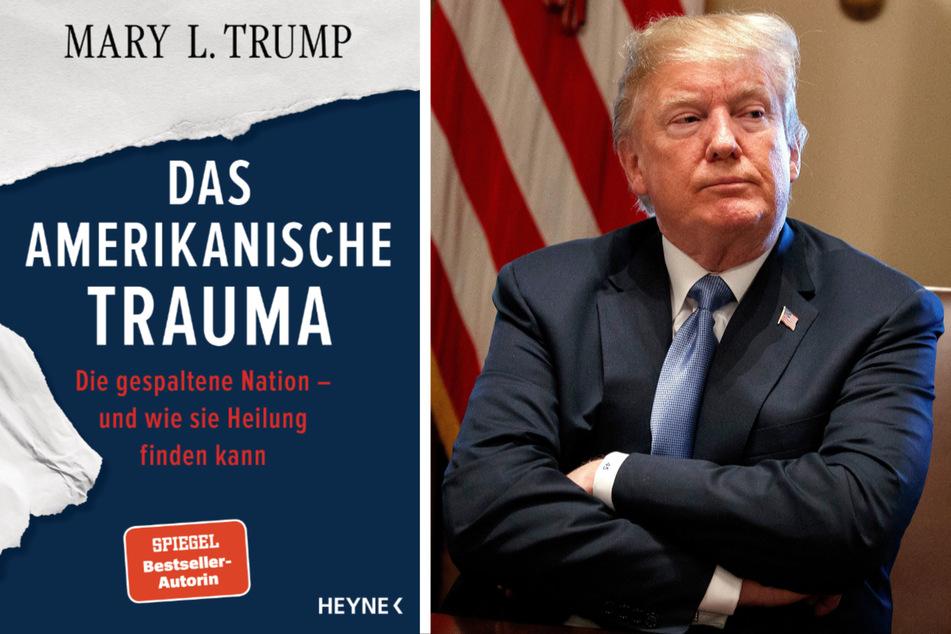 Trump-Nichte und Autorin: Donald gehört vor Gericht und verurteilt