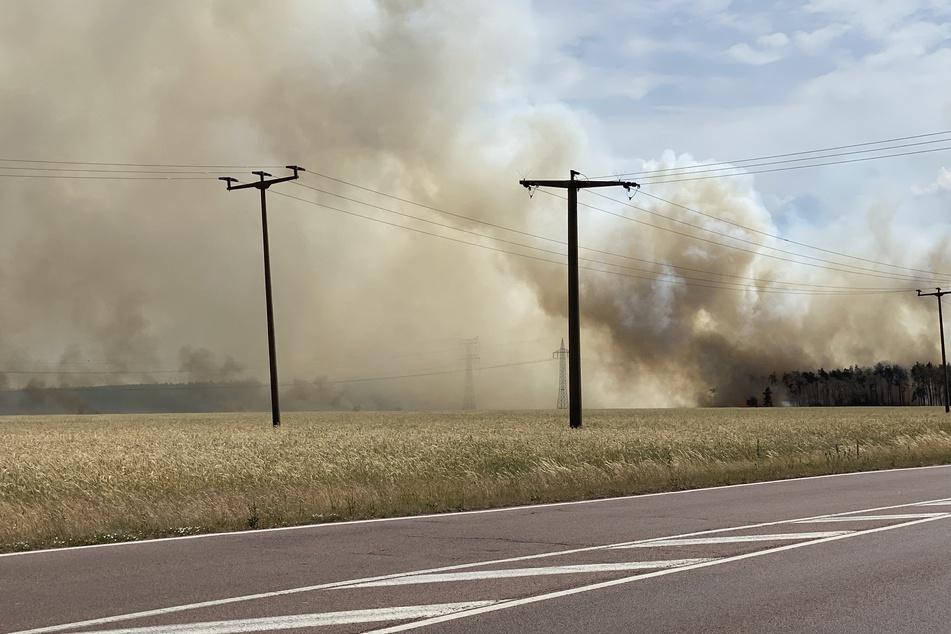 Kilometerweit war der Rauch des Brandes zu sehen. Anwohner wurde gewarnt, ihre Fenster geschlossen zu lassen.