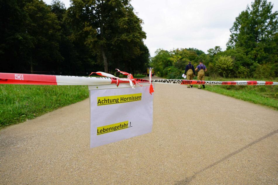 Insgesamt acht Personen wurden durch die Hornissen verletzt.