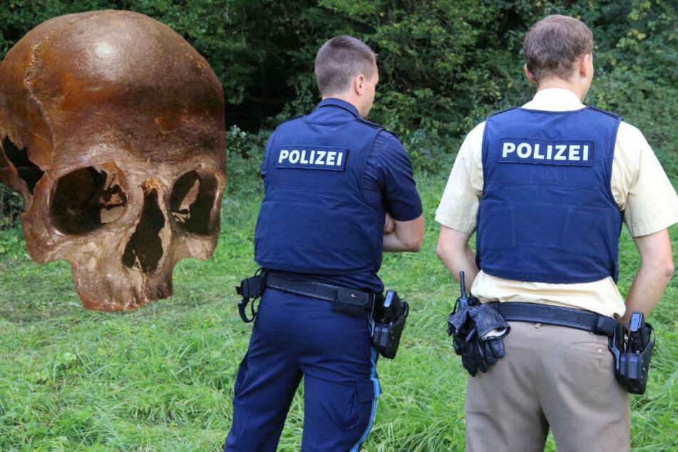 Die Knochen wurden in einem Wald in Unterfranken entdeckt.