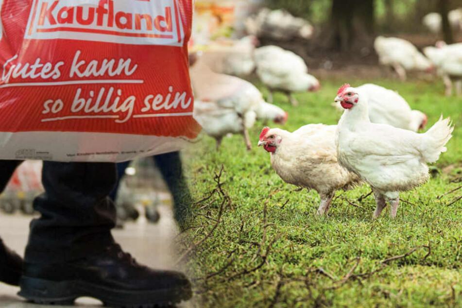 Billigfleisch im Supermarkt: Das ändert Kaufland jetzt bei den Hähnchen