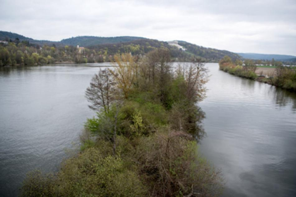 Das Donauufer in Donaustauf. Hier wurde die Leiche von Malina nach wochenlanger Suche gefunden.