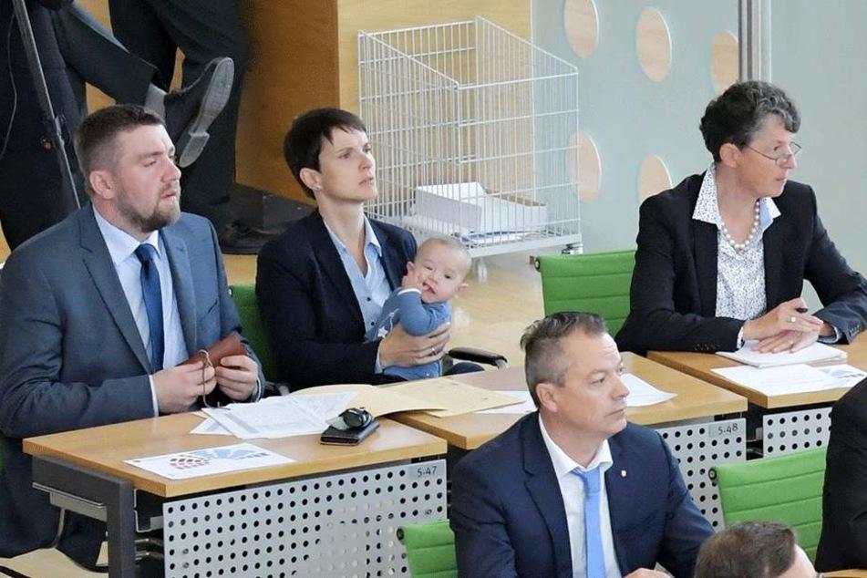 In der ersten Landtagssitzung nach der Spaltung saßen die damals drei  Abtrünnigen Uwe Wurlitzer (42), Frauke Petry (42) und Kirsten Muster (56) noch  in der letzten AfD-Reihe.