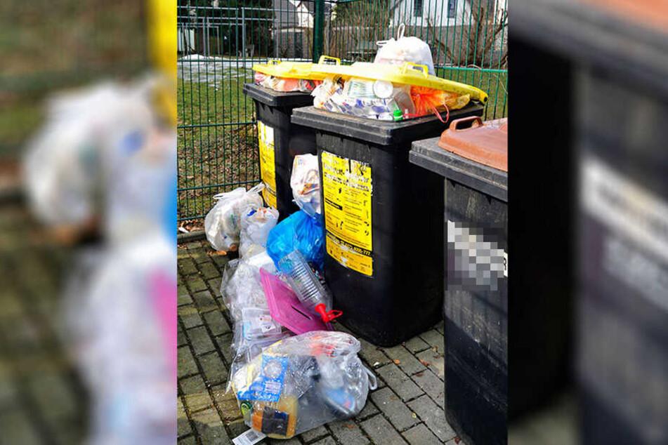 29 Kilo Müll entsorgt jeder Dresdner pro Jahr in der Gelben Tonne.