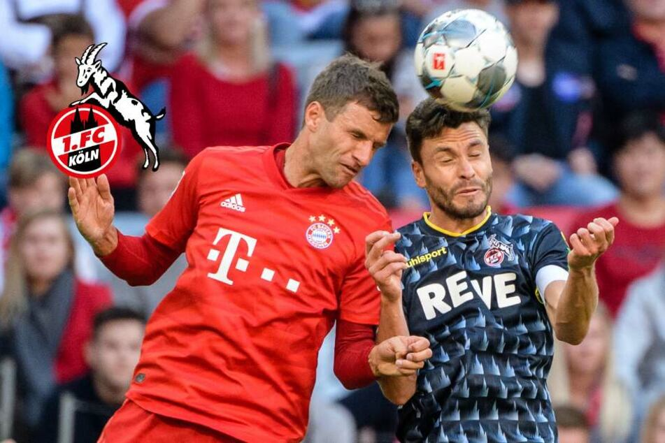 1. FC Köln fordert Meister Bayern: Zwei Spieler wackeln noch