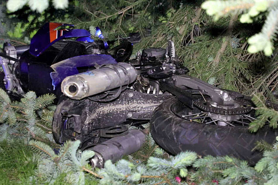 Das Motorrad landete in einem Baum.