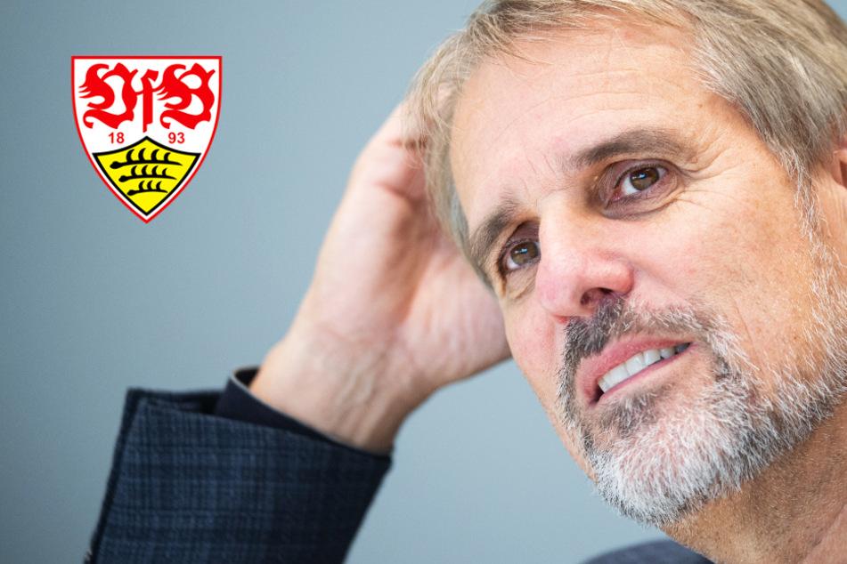 Daimler-Mann Porth bindet Verbleib beim VfB an Präsidenten-Wahl, Fans haben klare Haltung