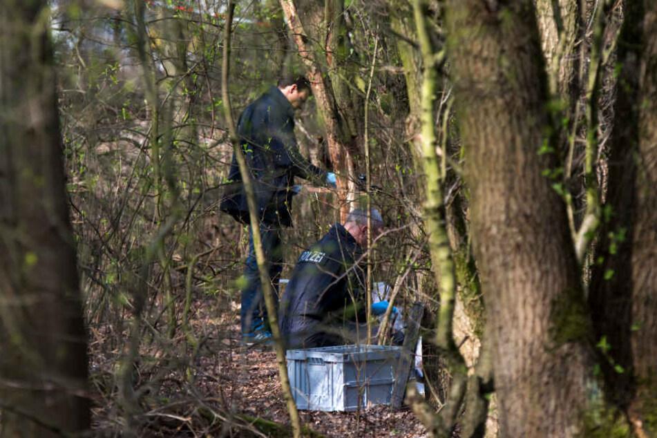 Ermittler der Polizei stehen in dem Waldstück, in dem Schüler eine Babyleiche fanden.