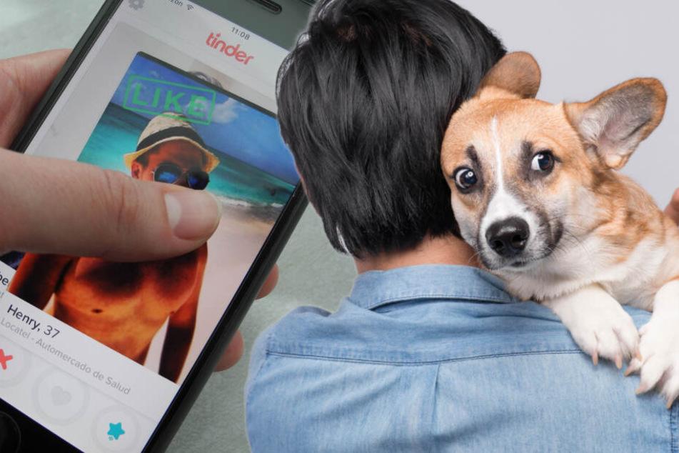So locken Hunde-Fotos in die Dating-Falle