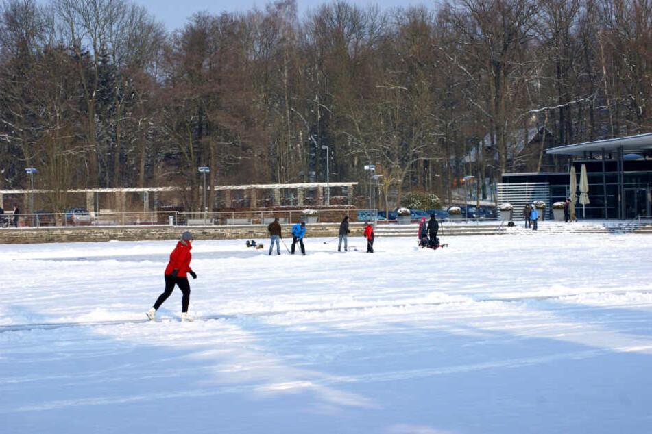 2012 nutzten viele Chemnitzer den zugefrorenen Pelzmühlenteich zum Eislaufen und Eishockeyspiel.