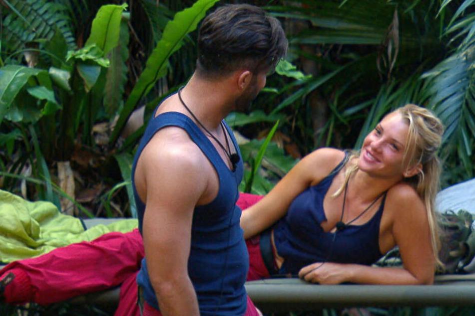 Ein Flirt vor laufender Kamera: Domenico de Cicco und Evelyn Burdecki am Beginn des RTL-Dschungelcamps.