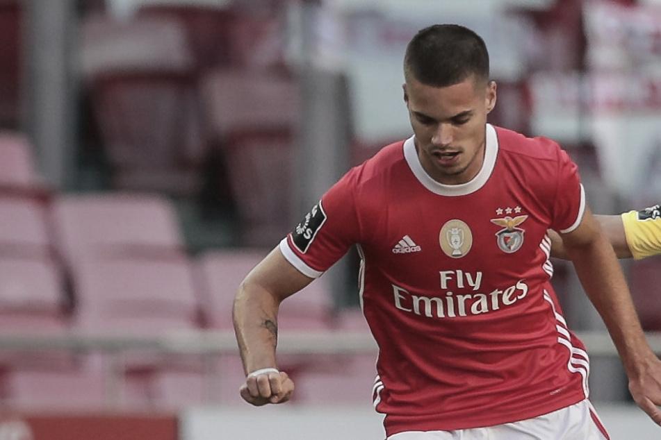 """Ex-BVB-Kicker bereitet Benfica-Flucht vor: Weigl engagiert Alaba-""""Piranha"""" Zahavi! Bundesliga-Rückkehr?"""