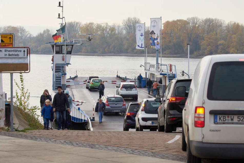 Die Fährbetriebe am Rhein kämpfen um ihre Existenz.