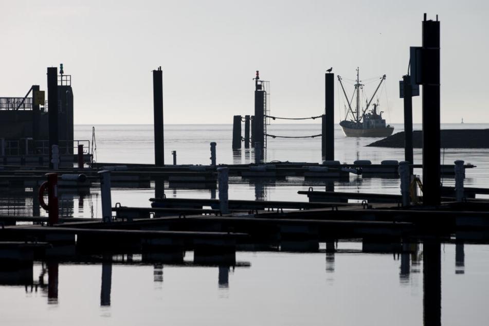 Zwischen leeren Anlegern ist ein Fischerboot auf dem Weg in den Hafen von Cuxhaven in Niedersachsen zu sehen.