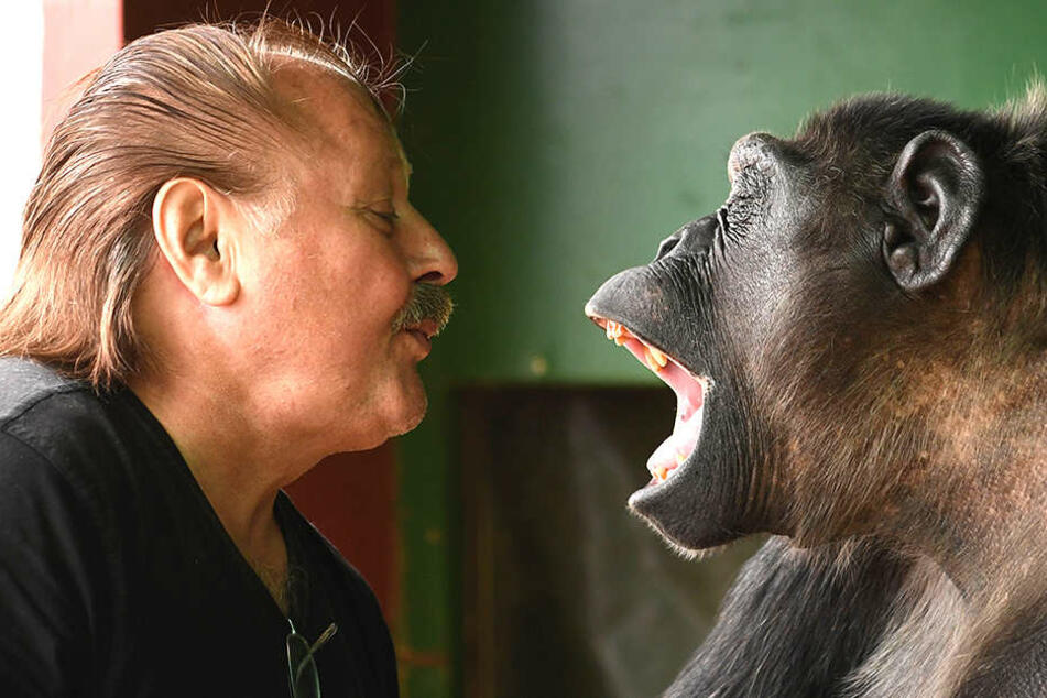 Zirkusdirektor Klaus Köhler setzte sich dafür ein, dass sein Schimpanse Robby bei ihm bleiben durfte.