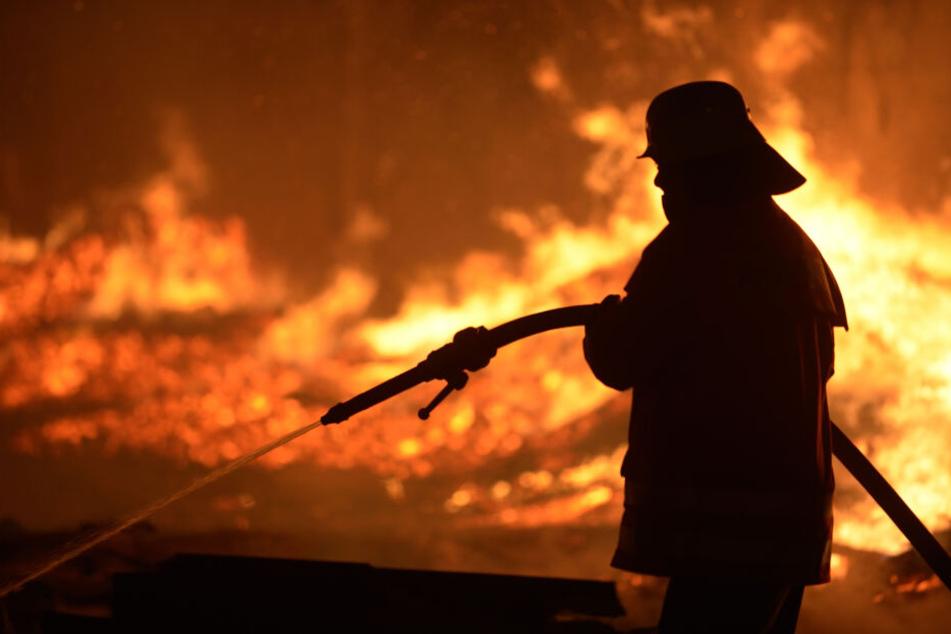 Schon wieder! Ahrenloher Moor steht zum vierten Mal in Flammen