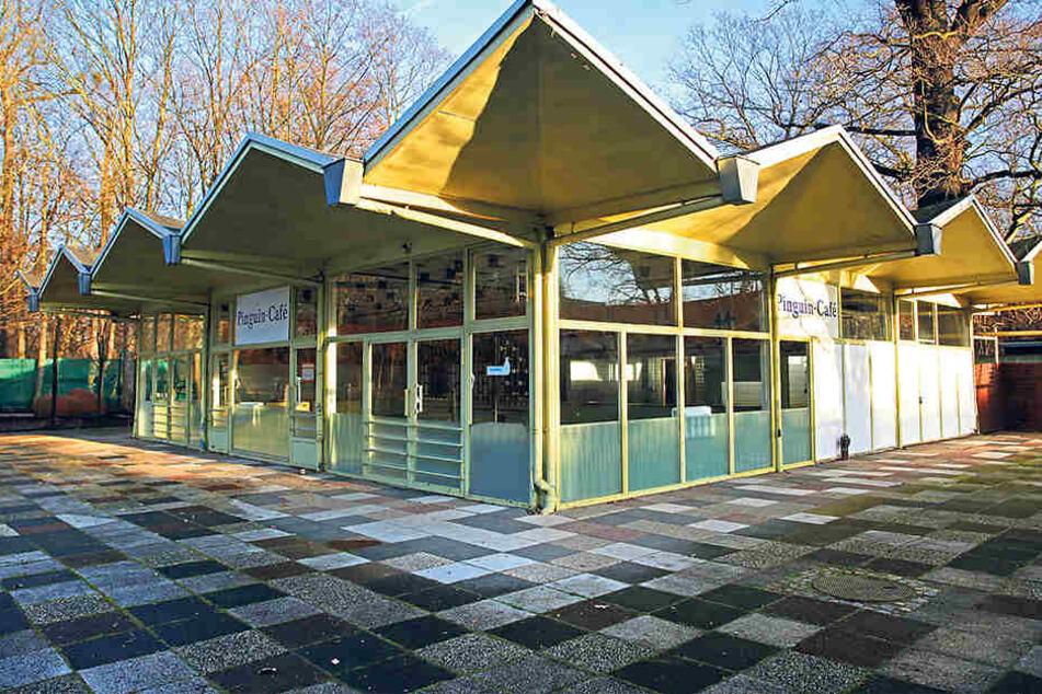 Stimmt der Rat zu, wird Dresden das Pinguin-Café im Dresdner Zoo für 40.000 Euro zurück bauen und einlagern.
