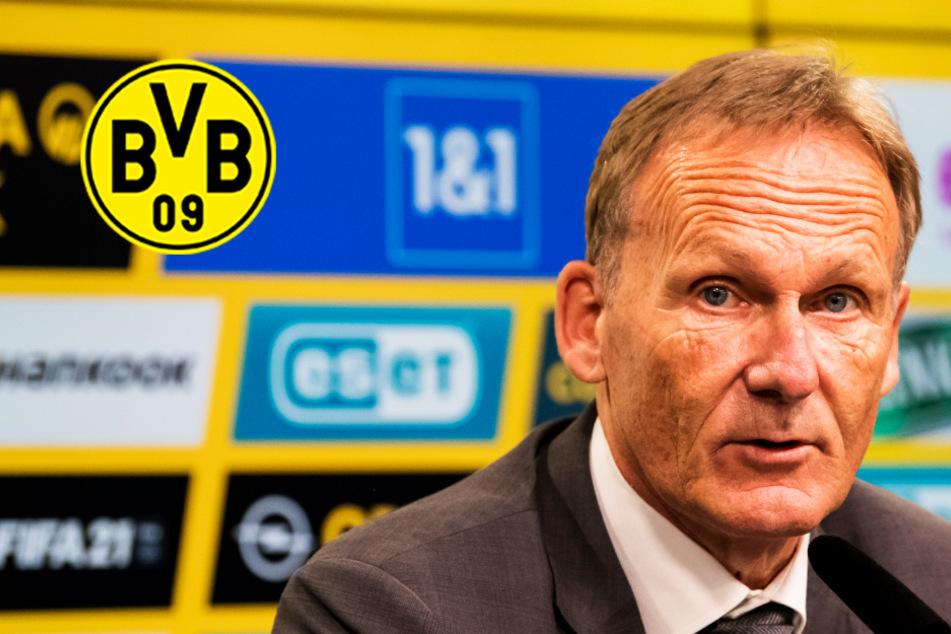 """BVB-Boss Watzke mit Breitseite gegen Politik! """"Populistisches Fußball-Bashing"""""""