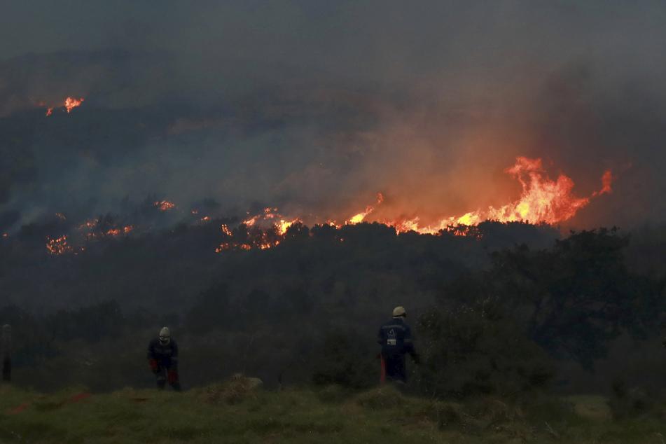 Das Feuer wütet an den Hängen vom Tafelberg, dem berühmten Wahrzeichen von Südafrika.