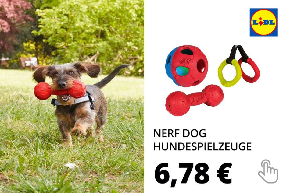 NERF Dog Hundespielzeuge zum Werfen, Ziehen oder Kauen