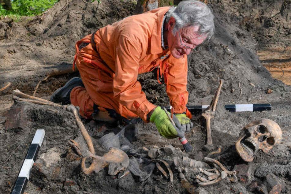 Hier graben Hobby-Historiker nach deutschen Soldaten aus dem 2. Weltkrieg