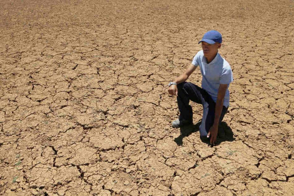 Wegen extremer Dürre: Einwohner sollen kürzer Zähne putzen