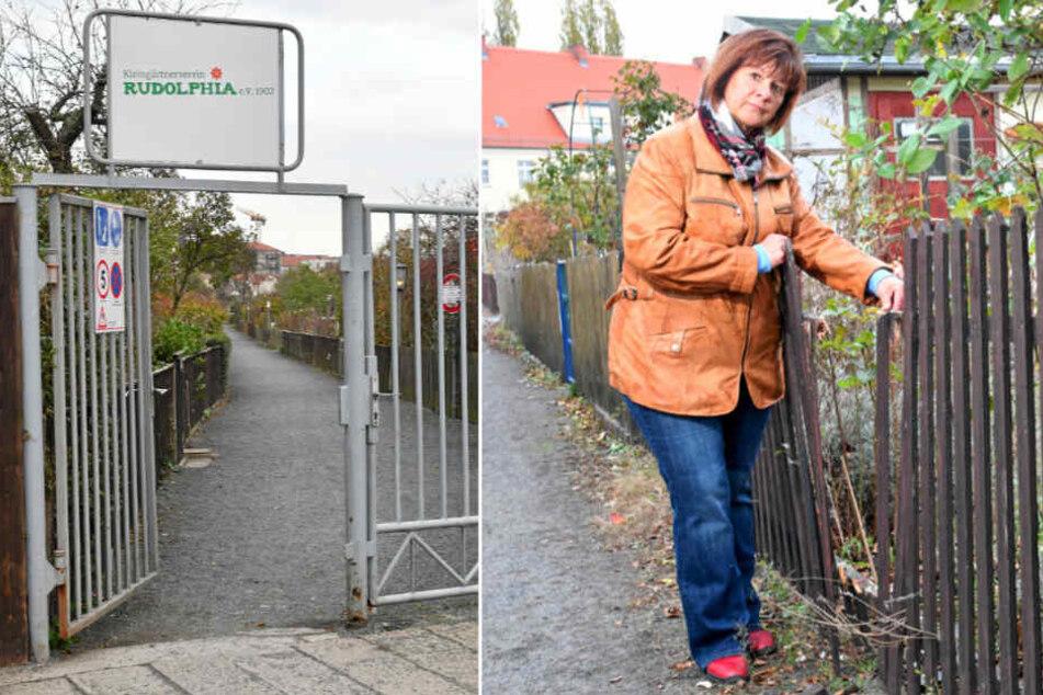 Dresden: Kleingärtner in der Leipziger Vorstadt sauer! 19 Lauben in einer Nacht aufgebrochen