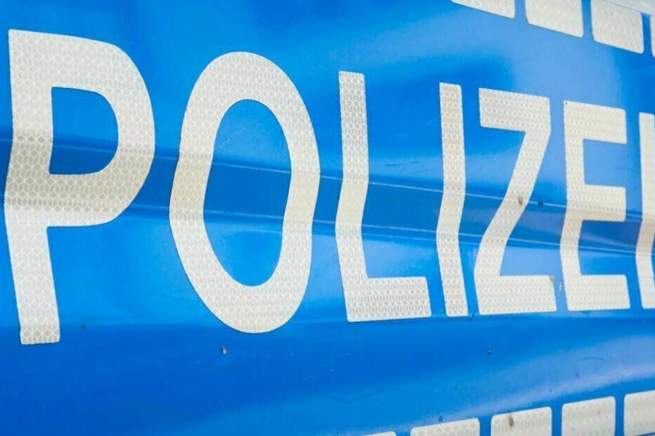 In einer Parkanlage stellten die Polizisten schließlich einen 16-Jährigen. (Symbolbild)