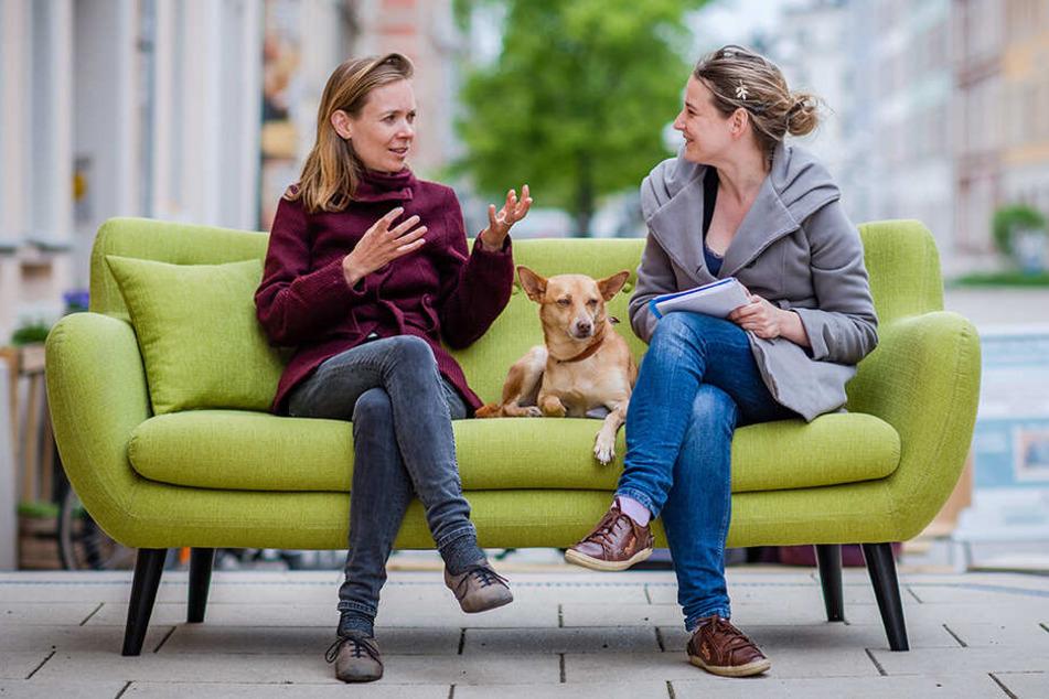 """""""Was in Brüssel beschlossen wird, betrifft uns alle"""": TAG24-Interview mit Anna Cavazzini"""