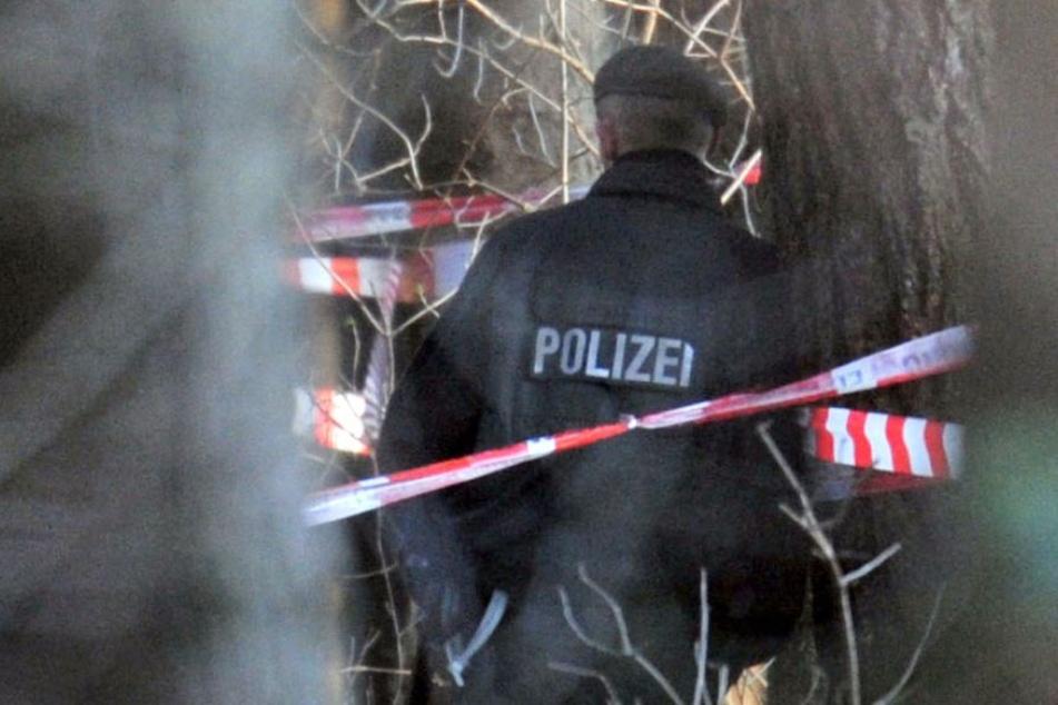 Leiche in Wald entdeckt: Tatverdächtiger führt Polizei zum Fundort