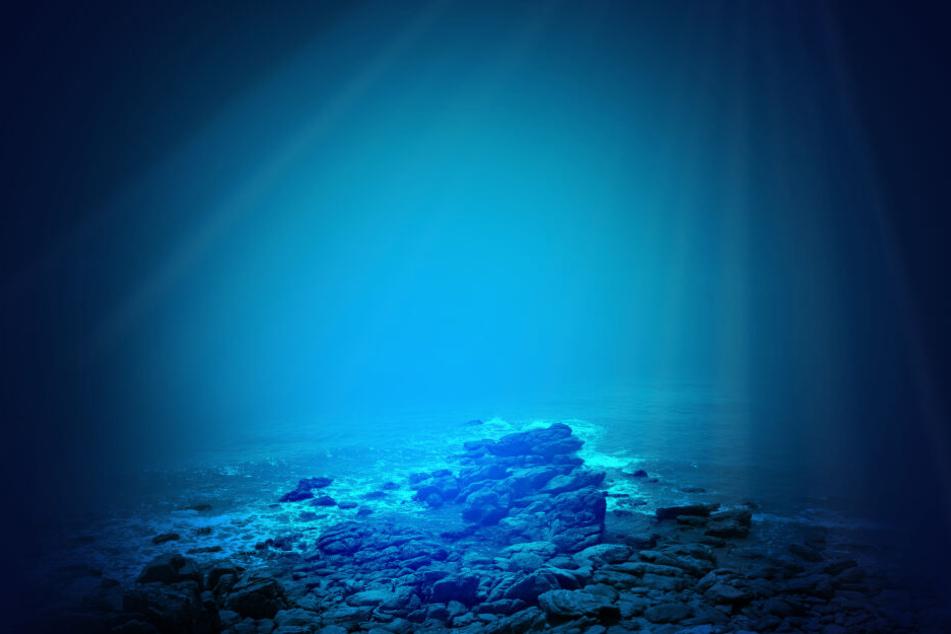In die Tiefe des Meeres gelangt selten so viel Licht wie auf diesem Bild, große Augen sind deshalb sehr sinnvoll.