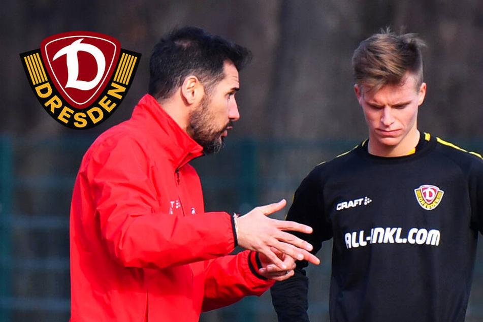 Dynamo-Coach Fiel hilft Burnic mit Zuckerbrot und Peitsche aus der Krise!