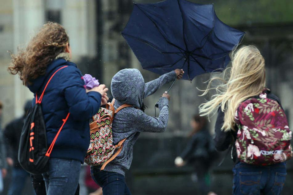In den kommenden tagen sollte man morgens eine Jacke nicht vergessen, empfiehlt die DWD-Meteorologin.