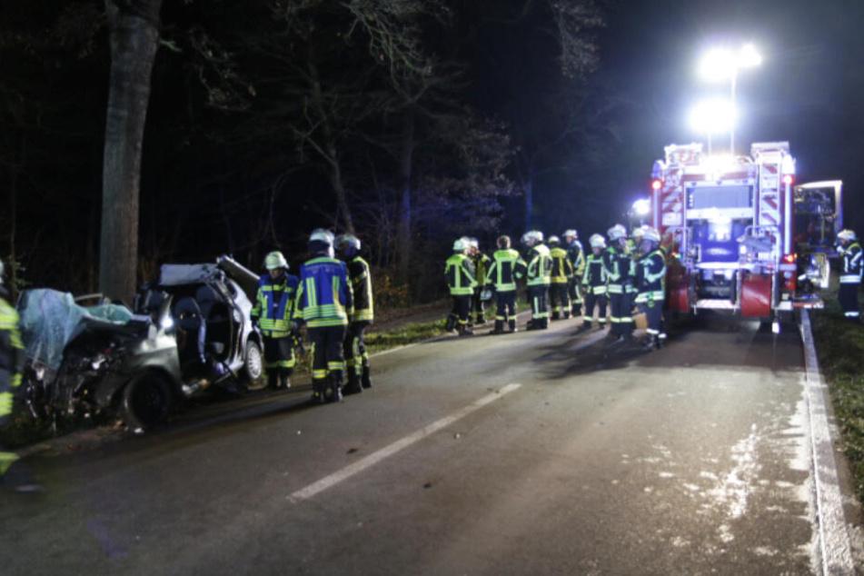 Die Feuerwehr musste den Fahrer aus seinem Wrack befreien.