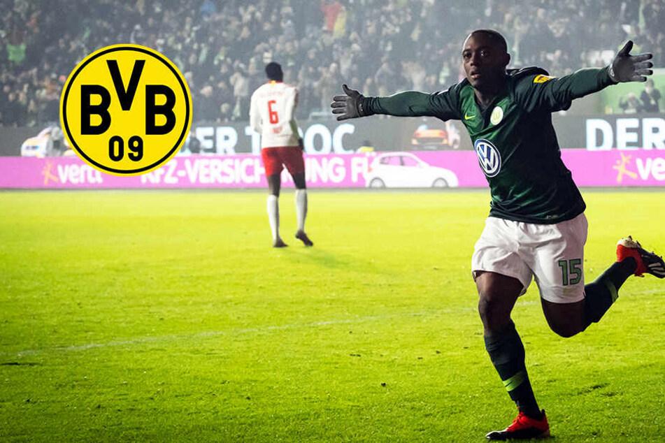BVB an Bundesliga-Star dran: Kommt Linksverteidiger von Liga-Konkurrent?