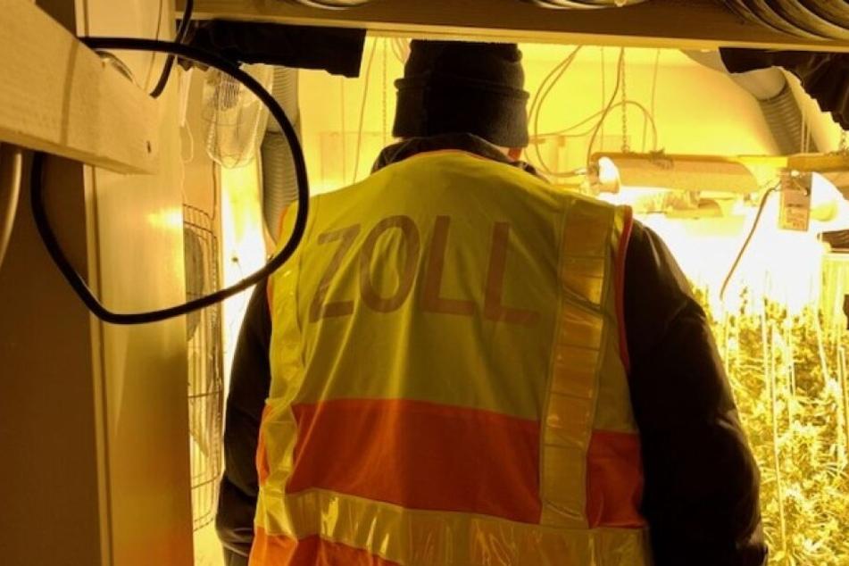 Ein Mitarbeiter des Zolls bei der Durchsuchung.
