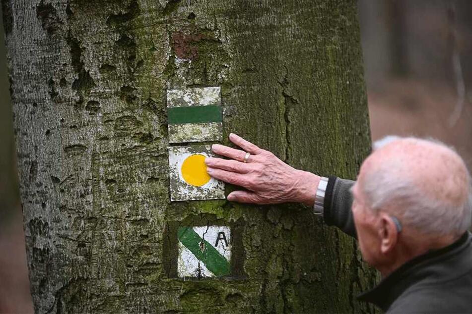 Wind, Wetter und Vandalismus: Das sind die Grunde dafür, dass viele Markierungen regelmäßig erneuert werden müssen.