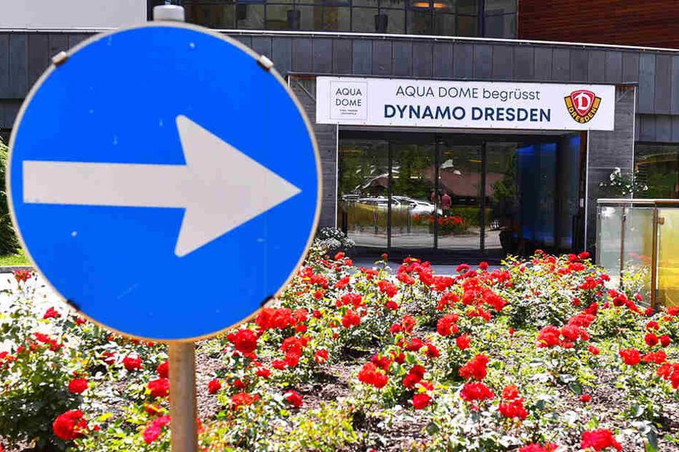 Da geht's lang! Der mit Blumen verschönte Eingang zu Dynamos Team-Hotel.